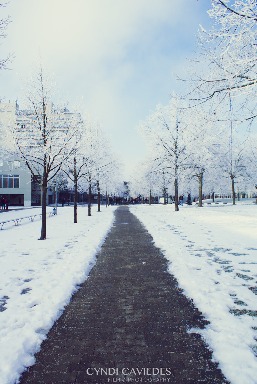 cyndi_caviedes_uni_stuttgart_winter_germany